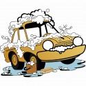 Îngrijire auto